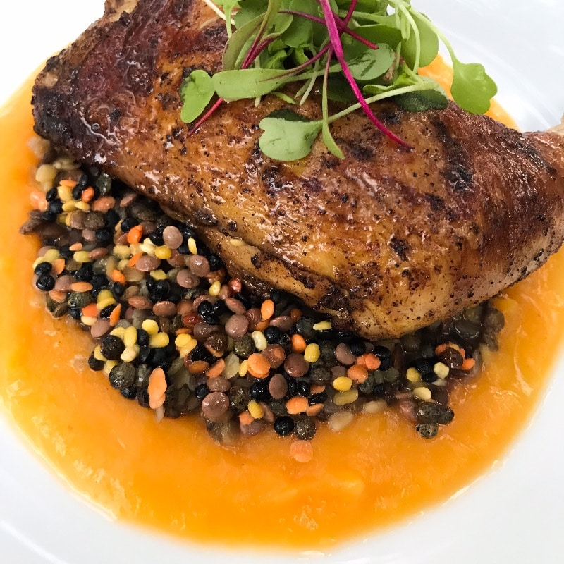 Roasted chicken w/ tri color lentils & butternut puree
