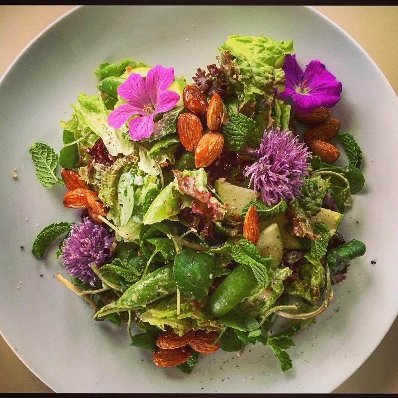 seasonal salad with candied almonds & preserves citrus vinaigrette
